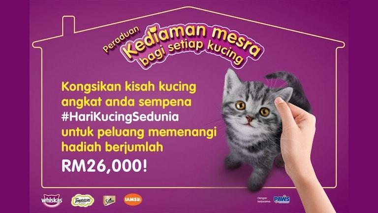 Peraduan Whiskas: Kediaman Mesra Bagi Setiap Kucing